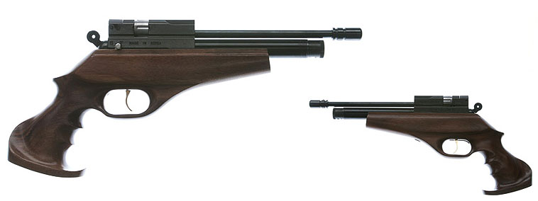 http://www.mdqbalines.com.ar/img-artic/Evanix_Hunting_Master_pistola.jpg